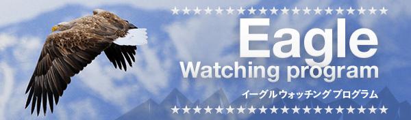 EAGLE WATCHING TOUR