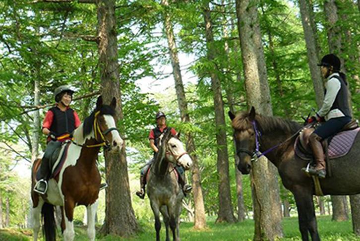 馬や自然と触れ合える