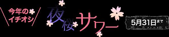 今年のイチオシ!夜桜サワー(5月31日まで)