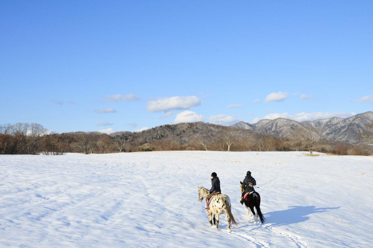 うらかわで!短期集中乗馬レッスンプログラム<2020年冬・春>